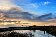 Stalworth Steveston Sunset