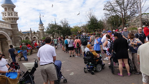 KennythePirate in the Parks Magic Kingdom Feb 23 2016 (111)