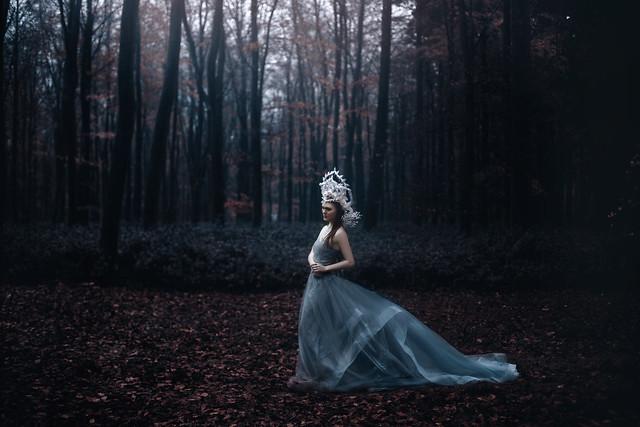 .bella. - The woods hold secrets...