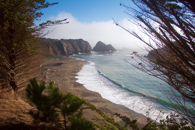 Elk's beach