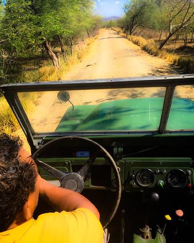 vintage costarica wetlands landrover vintagephoto dryseason natureexplorer newtour sapoaadventures bestguides dreamjobmakers