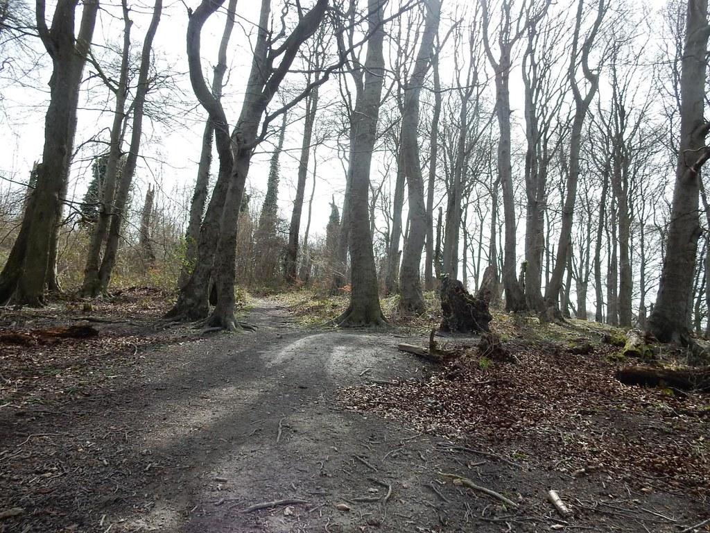 Sundon Hills Harlington Circular