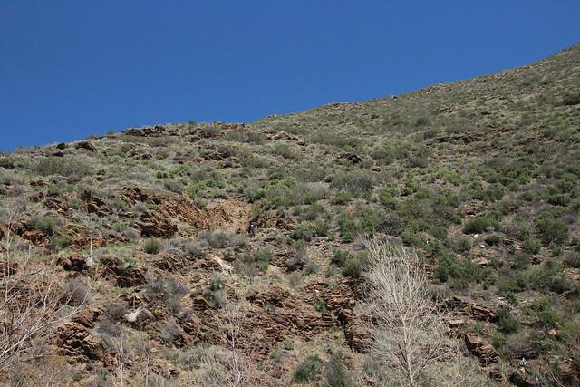 Hubbard Mine