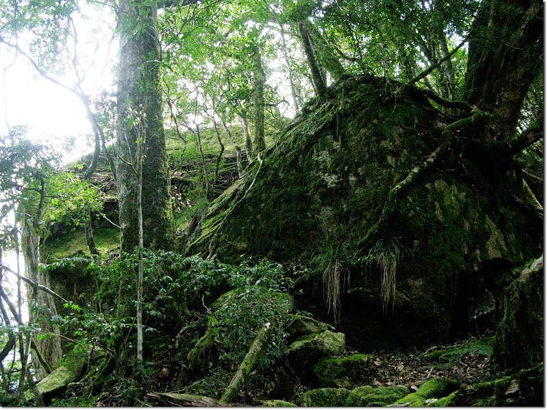 斯拉巴庫山登山途中景觀(巨石)