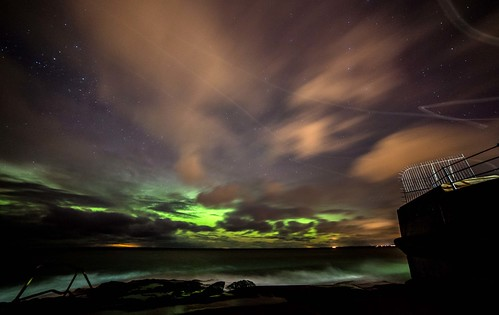 Northern lights and ghostly seagulls