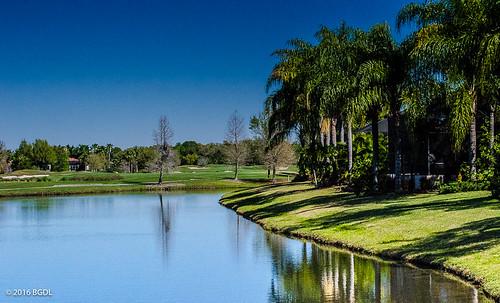 lake reflections landscape florida golfcourse lakewoodranch afsnikkor55200mm1456g nikond7000 bgdl lightroomcc goingfor4inarow~366