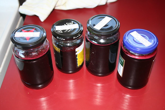 Elderberries - 2016-04-26 - 01 - Extracting juice