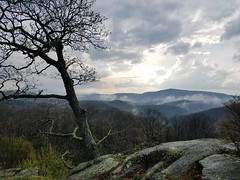 Spending time with old friends #naturelovers #nature #landscape #booneview #blueridgeparkway #findyourpark #nofilter #northcarolina #mountain #mistymountains #skylovers