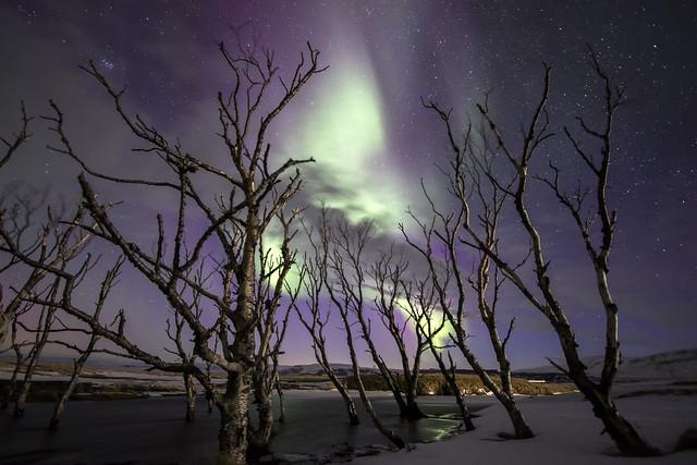 norðurljós #1   Iceland
