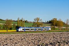 18 avril 2016 B 84645 Train 864298 Bordeaux -> Saintes Chartuzac (17) - Photo of Jussas