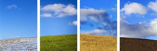 autumn winter wild summer italy cloud snow color fall primavera field rural canon season eos spring nikon nuvole estate south basilicata crop campo change matera inverno autunno chang stagioni giuseppe grano lucania agricoltura cillis 600d agricolture pietragalla