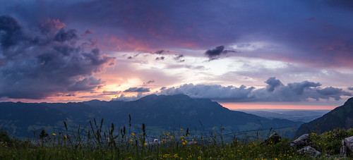 pink flowers sunset mountain clouds forest schweiz switzerland weide sonnenuntergang sundown meadow wiese luzern wolken blumen stormy berge pilatus lucerne wald alp abendrot abendstimmung obwalden zentralschweiz bergkette stürmig alpnach matthorn ächerli