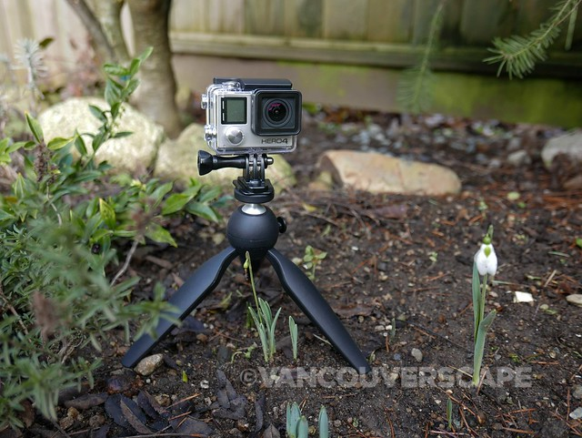 Manfrotto PIXI Mini Tripod-4