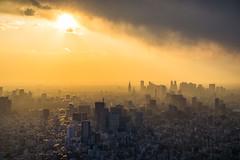 Orange-Soaked Tokyo