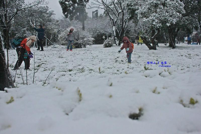 2016-台北陽明山-瑞雪-難得一見的雪白山景-17度C隨拍 (28)