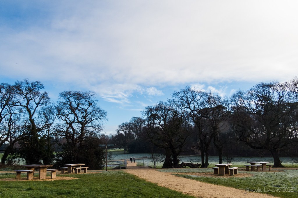 A frosty start at Upton Country Park