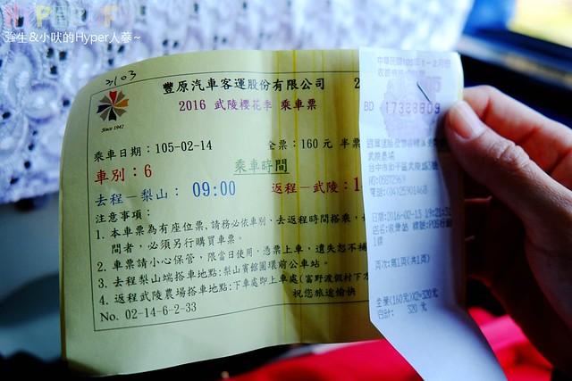 合歡山&武陵農場 (13)