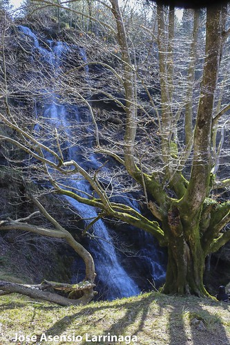 Parque Natural de Gorbeia  #DePaseoConLarri #Flickr -3082