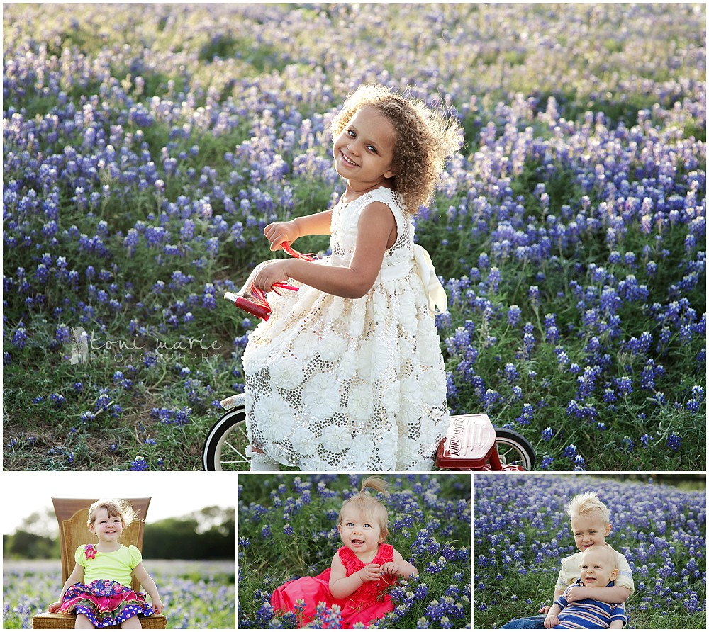 bluebonnet mini sessions - Toni Marie Photography