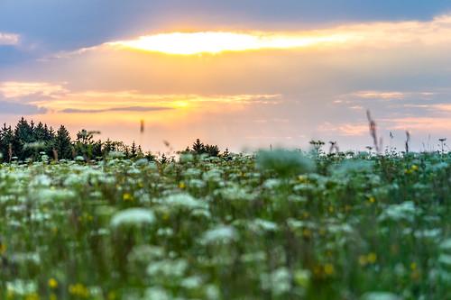 sunset nature clouds germany landscape deutschland sonnenuntergang outdoor natur wolken alb landschaft wandern wanderung badenwürttemberg schwäbischealb swabianalb burghohenzollern albtrauf schwäbschealb