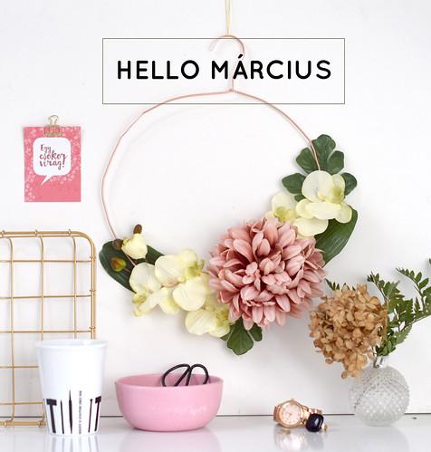 hello_marcius2016