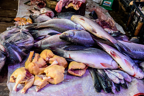 fish chicken expedition burma myanmar mm foodmarket kayah myanmarburma bawlakhe