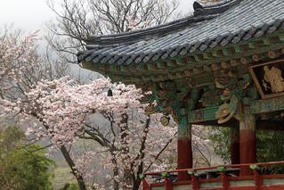 Bild av Beomeosa. temple busan southkorea canon60d canonefs1585mmf3556isusm