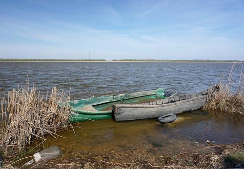 delta romania danube tulcea dunarea murighiol