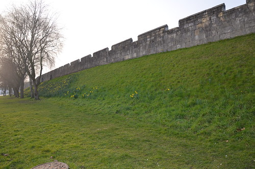 York City Walls Mar 16 (17)