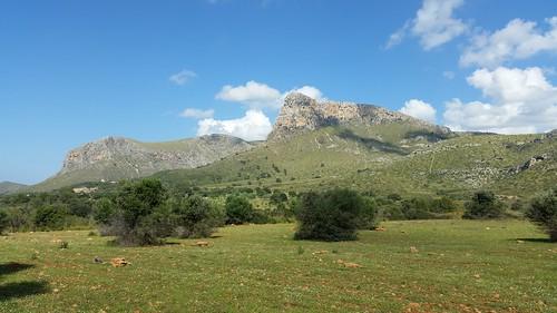 26538170006 2baacb7d27 Tag 6, Cuevas del Drach