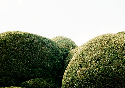Great balls of hedge