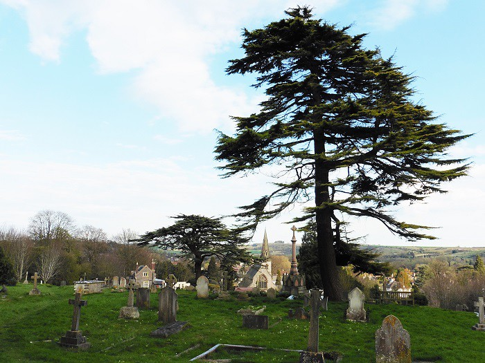 Top of the Cemetery