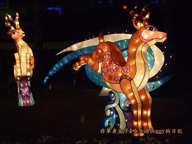 2013台北燈節在花博21