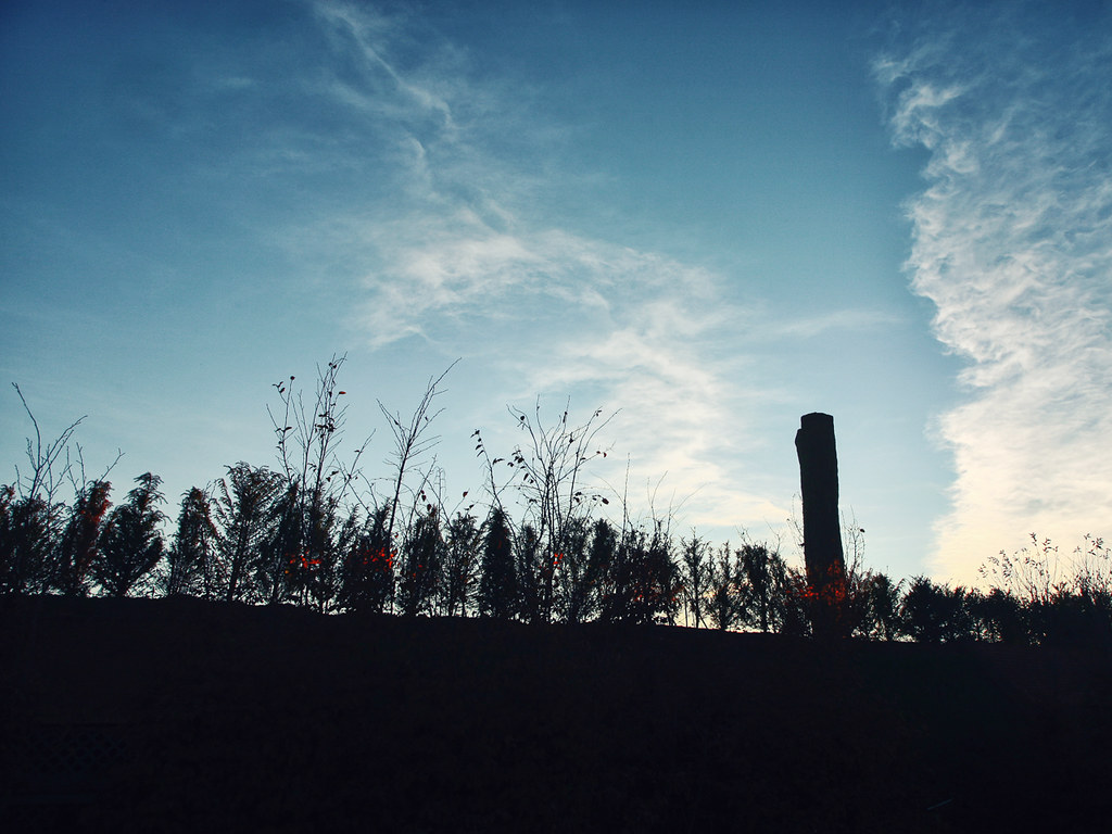 La Venaria Reale (Sunset)
