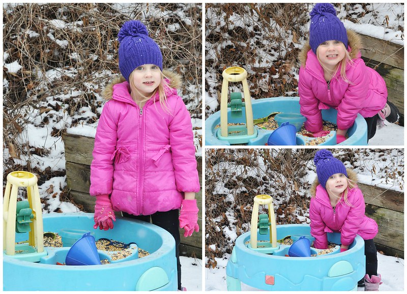 Seeds and Scoops Sensory Table