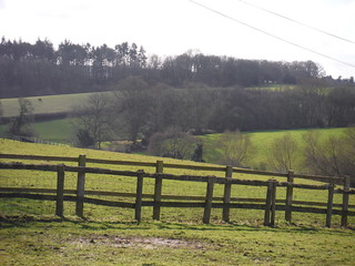 Scene near Oakwood Farm, Beenham