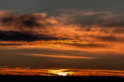 sunrise gold golden alberta strathconacounty tamron150600 24kau