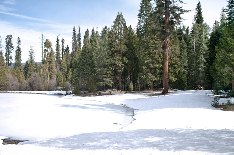 04yosemite-snow-travel-landscape-trees