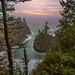 Misty Cove on the Oregon Coast by Cole Chase Photography