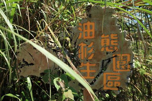台東縣達仁鄉周邊景點吃喝玩樂懶人包 (9)