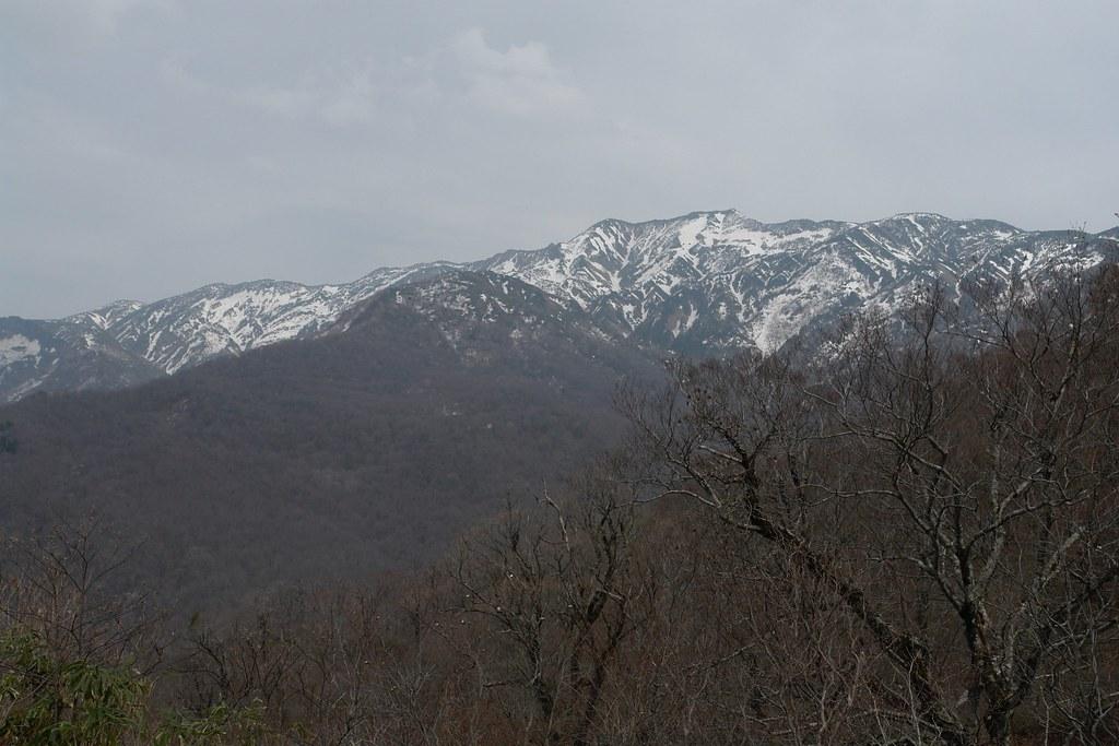 岩屋俣谷探勝路2016春 その2