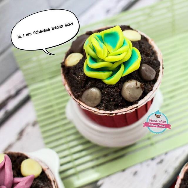 Hi, I am Echeveria Golden Glow ^^  #Succulent #EcheveriaGoldenGlow #Cupcakes #Chocolate100% #NoFondant #Edible #DianaCahya #BakingTutorial #BakingClass #DianaCahyaBakingCourse #DeliciousChocolate #DeliciousChocoSucculentCupcake