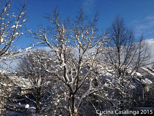 Schnee Neujahr 2015