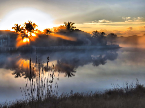 Morning fog on canal HDR 20150216