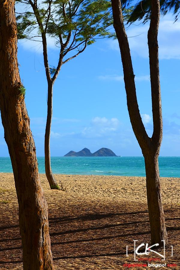 Hawaii_0227