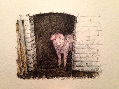An over sketched pig.