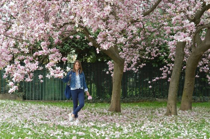 magnolia, tree, wildflower girl, primavera (1)