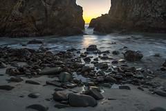 Sycamore Monterey Beach, Pfiffer Beach / Big Sur