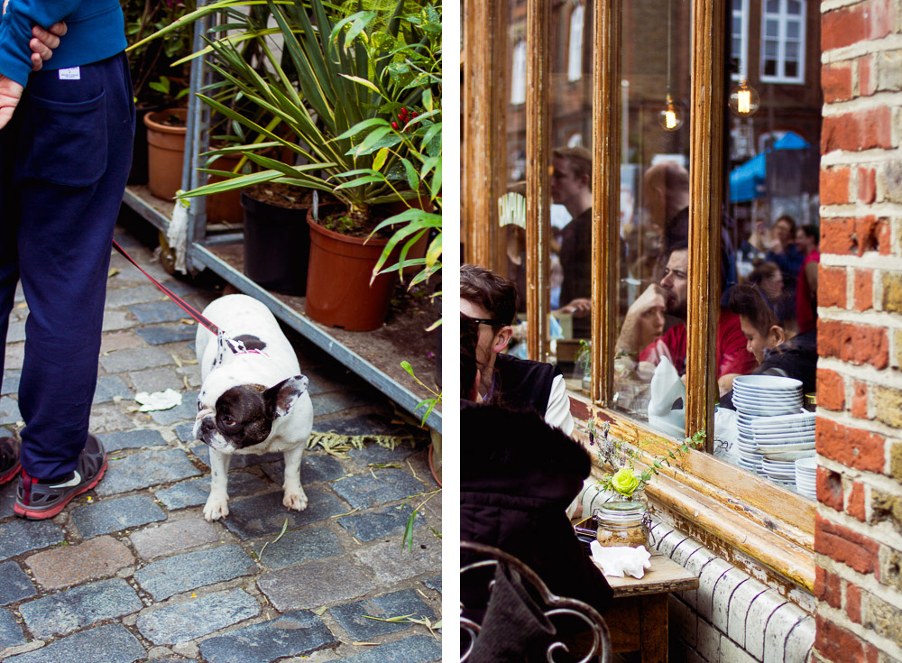 bulldog columbia road