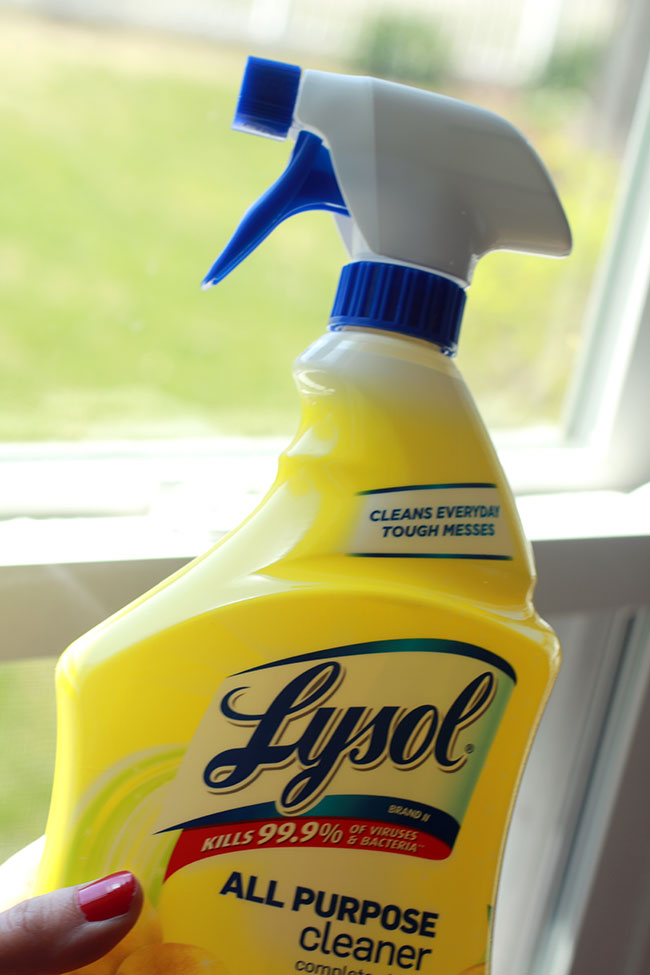 Kitchen2_Lysol-All-Purpose